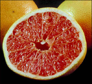 Include grapefruit into your healthy liver diet.