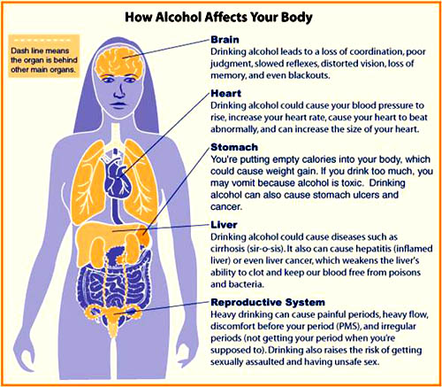 A fatty liver can turn into cirrhosis if left untreated: What alcohol does to your body.