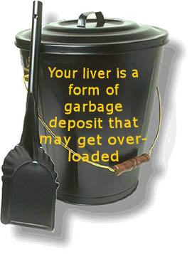 The liver is a sort of garbage can where all the toxins and bad stuff that the body doesn't want go.