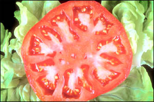 Eat plenty of non-refined foods such as salad, vegetables and fruit: Photo of sliced tomato on a salad leaf.