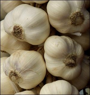 Garlic is also a good natural ingrediet to use in your liver diet.